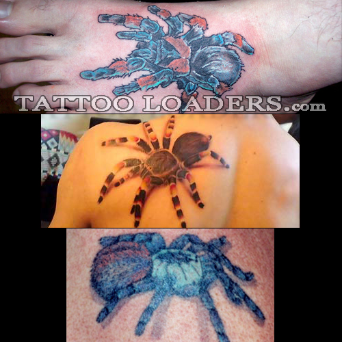 pieces tattoos. Tarantula Spider Tattoos